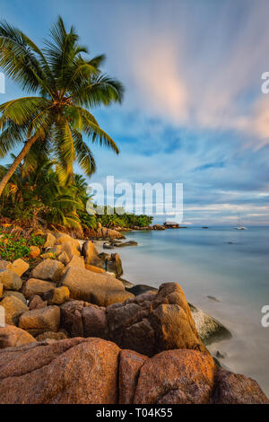Dense vegetation and lots of granite rocks are typical for the Anse Bateau on Praslin. - Stock Photo
