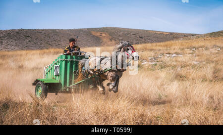 Novo Selo / Bulgaria - March 16 2019: St. Todor 's day. Race with horses and chariots on Todorov day in Novo Selo village, Bulgaria - Stock Photo
