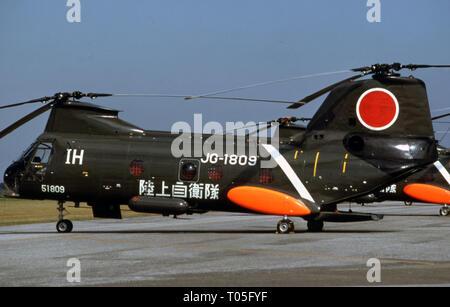 Japanisches Heer JGSDF Kawasaki KV-107 - Stock Photo
