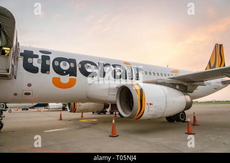 Taipei, Taiwan - February 2019: Tigerair aircraft landed in Taipei  Taoyuan International Airport. Tigerair Taiwan is a low-cost carrier - Stock Photo