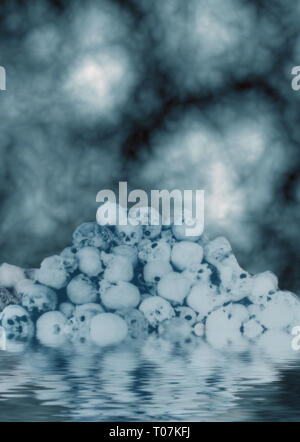 dark and scary skulls stacked on one another in water - Stock Photo