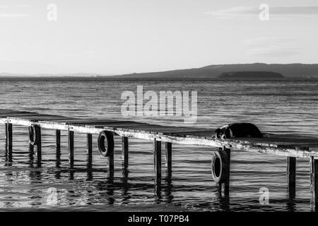 A dog resting on a pier overa a lake - Stock Photo