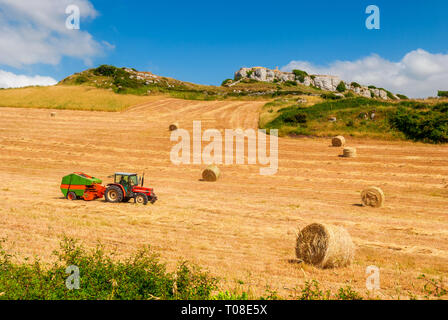 Farmer on Tractor making Hay Bales on Sardinian Countryside in Italy - Stock Photo