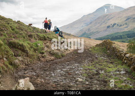 West Highland Way walkers avoiding mud and cow manure on section of footpath before Crianlarich known as cow pat alley in 2018 - reparwork  has since - Stock Photo
