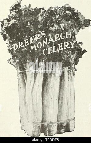 Dreer's garden book 1926 (1926) - Stock Photo