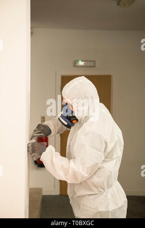 A man in a white paper / haz mat / safety suit and specialist dust  mask tests and checks a wall and it's construction for environmental safety - Stock Photo