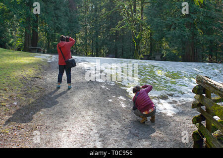 Two young Asian women photographing nature in a wooded park with snow on the ground. - Stock Photo