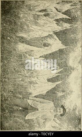 Economic entomology for the farmer Economic entomology for the farmer and fruit-grower economicentomolo01smit Year: 1906 Stock Photo