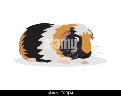 Cute friendly guinea pig icon isolated on white background, small fluffy rodent pet, vector illustration - Stock Photo
