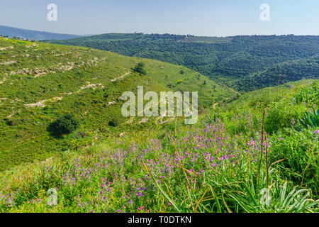 Lower Galilee landscape, viewed from Yodfat, Northern Israel - Stock Photo