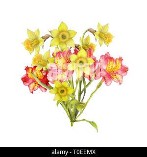 Hand drawn bouquet of narcissus,alstroemeria - Stock Photo