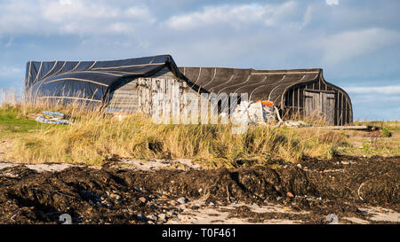Upturned wooden boat hulls on the shore of Lindisfarne Island used as fishermens' huts. - Stock Photo