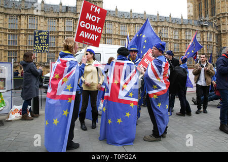 An anti-Brexit demonstrator seen holding a placard that says I'm not going away during the protest outside the Houses of Parliament. The UK will leave the EU on 29 March 2019. - Stock Photo