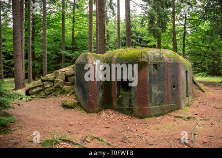 Camouflaged bunker WWII in the dark forrest - Stock Photo