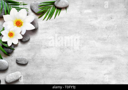 Flat lay composition with spa stones, flower and space for text on grey background. - Stock Photo