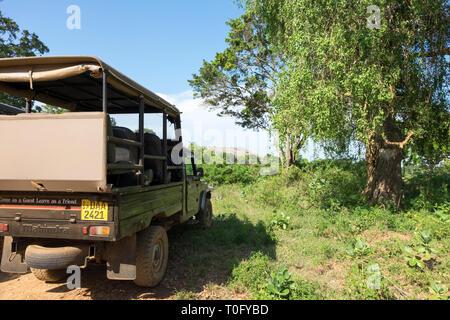 Safari in Sri Lanka / Yala Strict Nature Reserve - Stock Photo