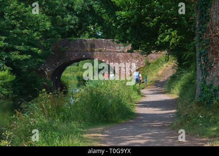 People making their way along the tow path at East Manley Bridge on the Grand Western Canal  in Devon, England on a bright summers day - Stock Photo