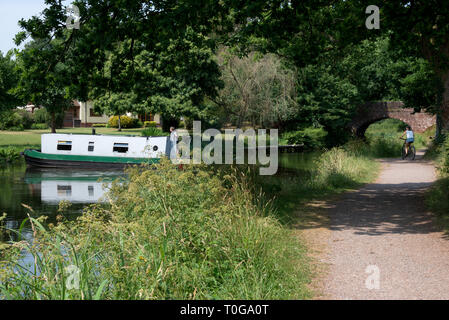 Canal boat making its way past East Manley Bridge on the Grand Western Canal  in Devon, England on a bright summers day - Stock Photo
