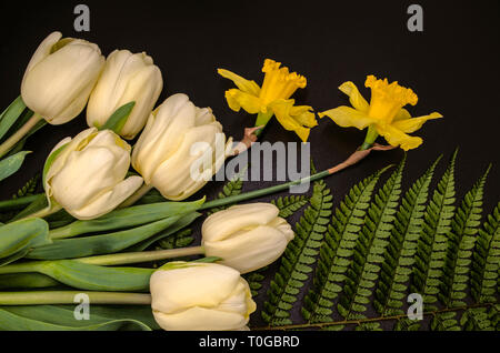 Bouquet of yellow daffodils and  white tulips with a large green fern leaf lie on a black background - Stock Photo
