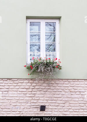 Typical european window with flowers. Flower box below a windows on an apartment building - Stock Photo