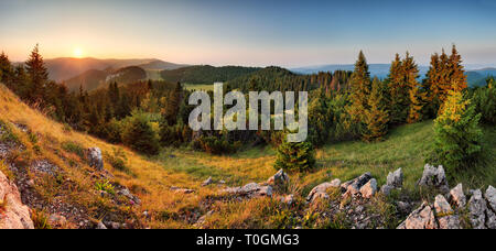 Spruce forest green mountain landscape panorama sunset, Slovakia. - Stock Photo
