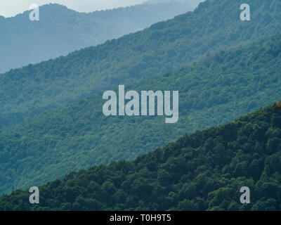 The green forest on the mountainside stretches into the distance in layers due to the lighting. Mountain summer forest. - Stock Photo