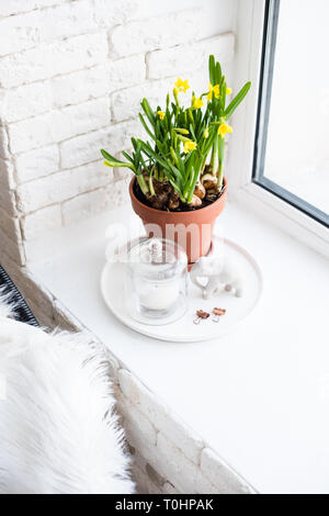 Springtime home decor with yellow daffodils on windowsill in white room interior - Stock Photo