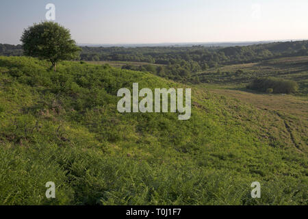 Picket Post over Foulford Bottom New Forest National Park Hampshire England - Stock Photo