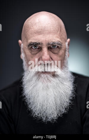 studio portrait of a bald man with tattooed arms and white beard - Stock Photo