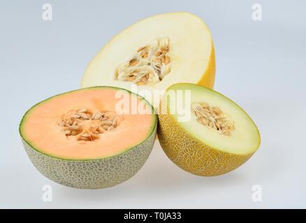Honeydew melon, Cantaloupe melon, Galia melon, studio admission, Honigmelone, Cantaloupe-Melone, Galia-Melone, Studioaufnahme