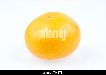 Grapefruit, studio admission, Pampelmuse, Studioaufnahme - Stock Photo