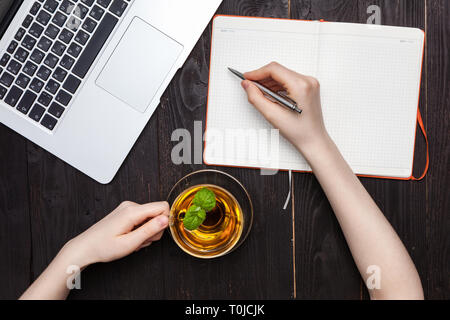 Woman hands drawing or writing with pen in open notebook - Stock Photo