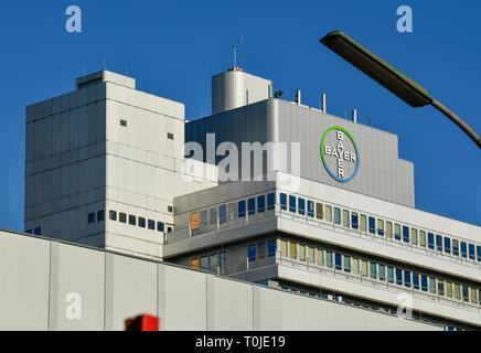 Bayer AG, Müllerstrasse, Wedding, middle, Berlin, Germany, Muellerstrasse, Mitte, Deutschland - Stock Photo