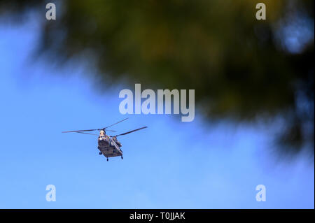 helicopter military two propellers Boeing Vertol flying in maneuvers - Stock Photo