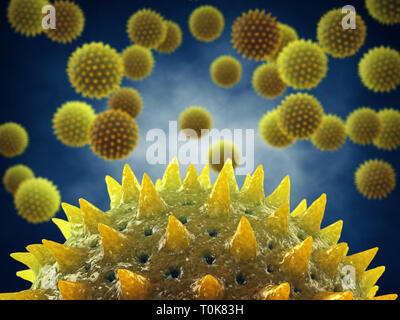 Pollen allergy is also known as hay fever or allergic rhinitis, Microscopic pollen grains