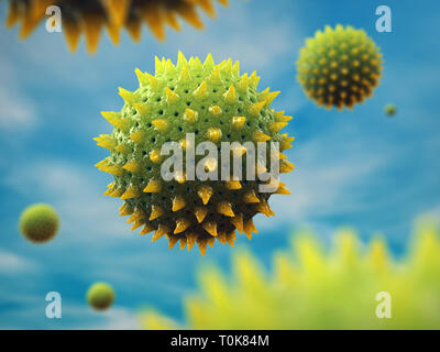 Pollen is one of the most common causes of allergies, Airborne pollen grains