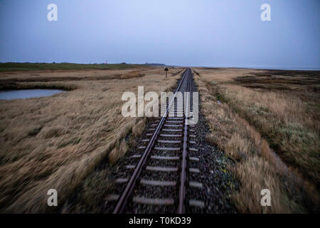 Insel Wangerooge, Ostfriesland, Island railway, from the pier to the village, marsh landscape,East Frisia, Northern Germany, North Sea Coast, - Stock Photo