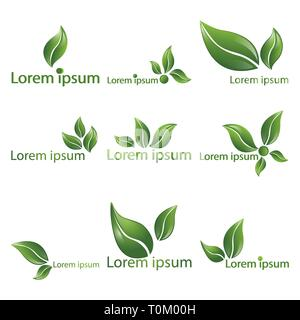 Leaf  realistic vector logotypes,  logo set of nine beautiful nature sign, spring time , for spa, organic  food or alternative medicine center web and - Stock Photo