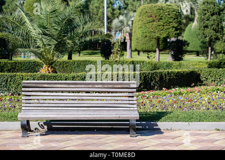 Wooden park bench in a city park on a beautiful summer day, close up - Stock Photo