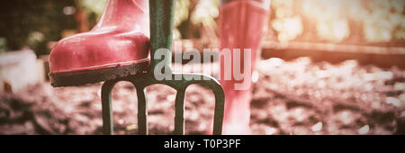 Low section of woman wearing pink rubber boot standing with gardening fork on dirt - Stock Photo