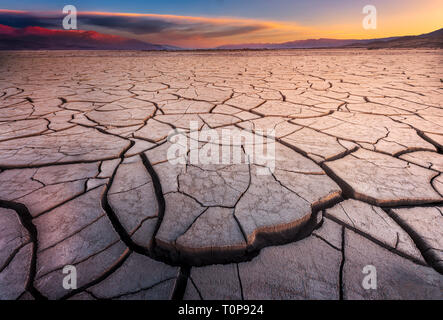 Cracked Mud Flats Bathed in Dawn Light  - Stock Photo