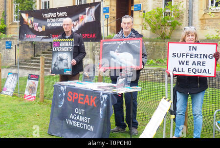 Oxford, UK. 21st Mar 2019. SPEAK animal rights campaigners protesting in South Parks Road. SPEAK was set up 15 years ago this month to protest against a new animal testing centre at the University of Oxford, the Biomedical Sciences Building, which opened in 2008. Following a two-year High Court battle, which ended in 2008, the university won an injunction meaning campaigners can only protest on Thursdays between 1pm and 4pm in a small designated area. They are also gearing up for a protest in Oxford on April 27th for World Day for Animals in Laboratories. Credit: Angela Swann/Alamy Live News - Stock Photo