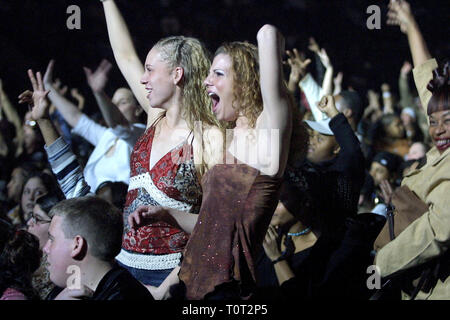 Concert Fans are shown cheering for their band during a 'live' concert performance. - Stock Photo