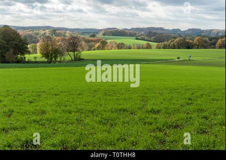Laendliches Ruhrgebiet mit Wiesen im Herbst bei interessanter Lichtstimmung in Muelheim Ruhr. - Stock Photo