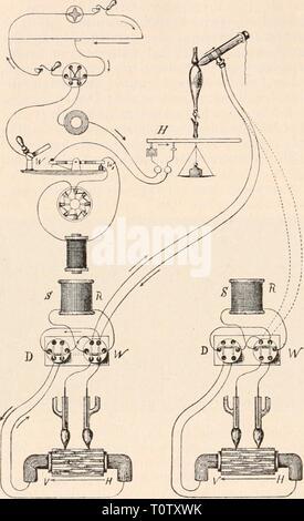 Elektrophysiologie (1895) Elektrophysiologie  elektrophysiolog00bied Year: 1895  812 Die elektrischen Fische. aperiodischen Magneten entwickelten Formel T= ^ x, worin F die Ablenkung durch den stetig fliessenden Strom, (e) die Basis der natürlichen Logarithmen, (x) den durch den Stromstoss erzeugten Aus- schlag und (tmax) die Dauer dieses oder eines beliebigen an- dern Ausschlages unter denselben Umständen bedeutet. So fand Sachs einen Werth von 0,00350', der, wie man sieht, mit dem von Gad für das Muskel- element angenom- menen Werth des Latenzstadiums nahe übereinstimmt. Gotch bestimmte dass - Stock Photo