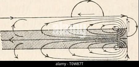 Elektrophysiologie (1895) Elektrophysiologie  elektrophysiolog00bied Year: 1895  Die elektromotorischen Wirkungen der Nei-ven. 707 Stromstärke und Stromesdauer an der physiologischen Kathode, d. h. an jedem Punkte, wo der Strom aus der erregbaren Substanz austritt, während der Schliessungszeit ein Zustand erhöhter Anspruchsfähigkeit besteht, während das Umgekehrte an der physiologischen Anode der Fall ist, so ergiebt sich unmittelbar auch ein Verständniss für die Thatsache der intra- und extrapolar sich ausbreitenden polar-antago- nistischen Erregbarkeitsänderungen eines polarisirten markhalti - Stock Photo
