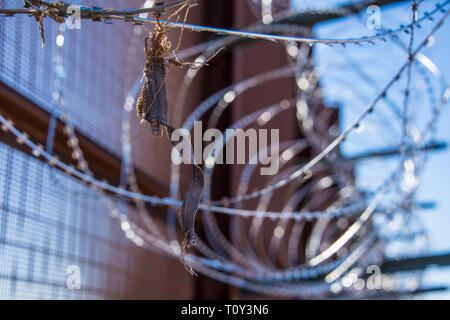 Close up of razor wire topping the high fence along the international border between United States and Mexico east of Lukeville, Arizona, USA side. - Stock Photo