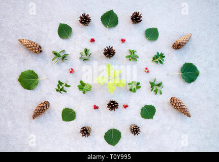 Summer forest plants collection on concrete background. Scandinavian nature flat lay - Stock Photo