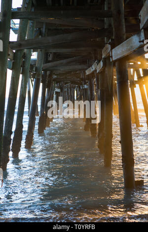 The image shows the  the wooden structure underneath the pier. It was built in 1928 with a length of about 395 meters. - Stock Photo