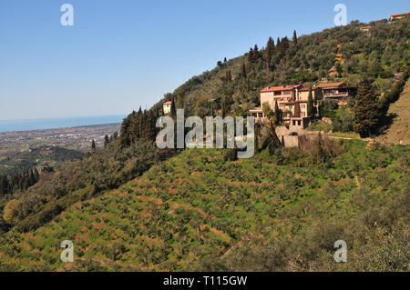 The hills of Camaiore in Tuscany with a breathtaking view of the Tyrrhenian Sea. - Stock Photo